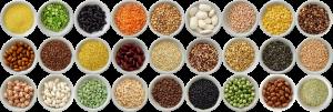 Céréales et légumes secs Sabarot