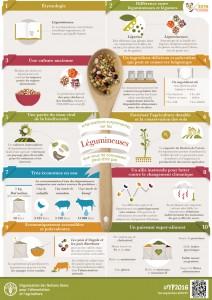 Infographie : ces choses étonnantes que vous ignoriez sur les légumineuses