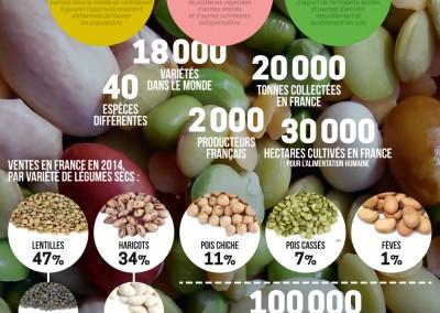 Légumineuses, graines d'avenir