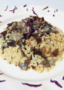 Melange5graines-champignons-noirs-lait-coco