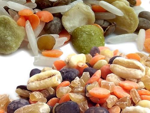 Les nouveaux mélanges de Sabarot : la solution gourmande pour mettre les protéines végétales à l'honneur.