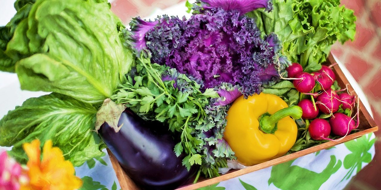 cuisine « raw » : croquez la vie… toute crue ! - lundi veggie